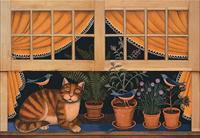 Cat Nap Window - Wall Mural