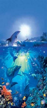 Dolphin in the Sun - Wall Mural