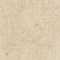 Map Toile Wallpaper