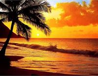 Pacific Sunset - Wall Mural