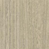 Plywood Striped Textured