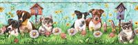 Puppies and Kittens Wallpaper Border