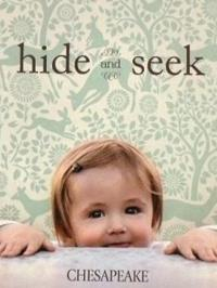 Wallpapers by Hide and Seek Book