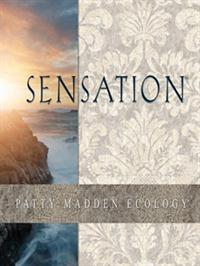 Wallpapers by Sensation Book
