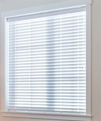2 Inch Econo Express Cordless Blind