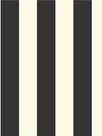 "3"" Wide Stripe"
