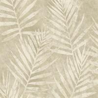 At7000 Ashford Tropics Wallpaper By Ashford House Of York