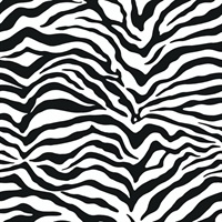 Modern Zebra Striped Skin