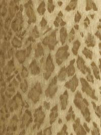 Animal Skin Sidewall