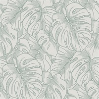 Balboa Olive Botanical Wallpaper