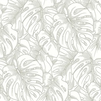 Balboa Silver Botanical Wallpaper