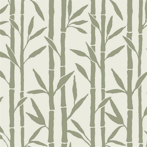 Bamboo Grove Wallpaper