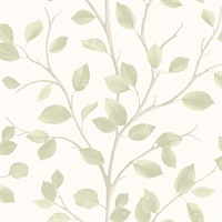 Beech Natural Leaf Wallpaper