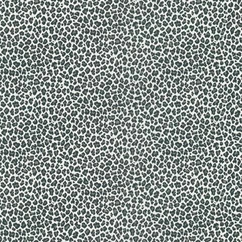 fe4baf6d780b Black   White Cheetah Print