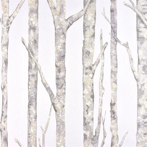 Brewster 2811-BLW10405 Advantage Lindens Grey Wood Wallpaper Grey