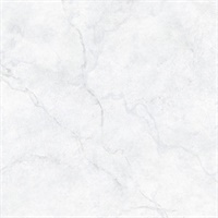 Carrara Marble, Peel and Stick