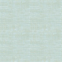 Chartres Aquamarine Screen Texture