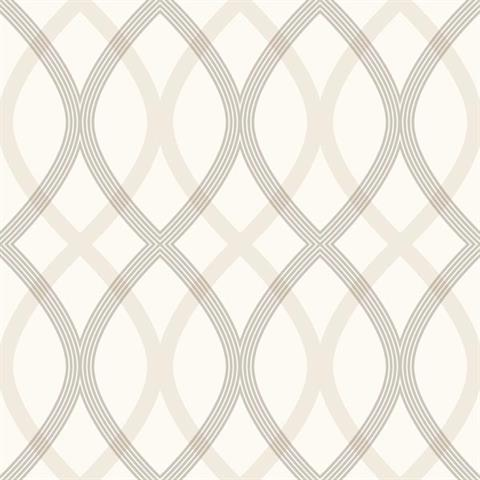 Contour Geometric Lattice