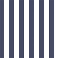 Dark Blue and White Stripes