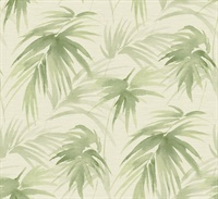 Darlana Green Grasscloth Wallpaper