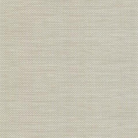 499 20002 Light Grey David Basket Weave Texture