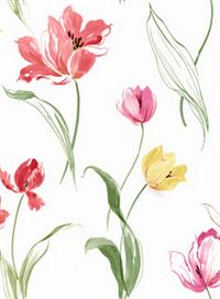 Tulip Toss Floral