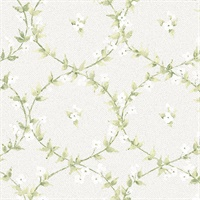 Floral Laurel Wallpaper in Greens and Greys