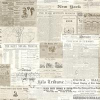 Gazette Vintage Newsprint