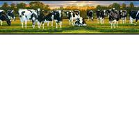 Chandler Blue Cow Pasture Portrait Border