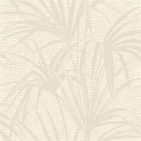 Hilo Cream Palm