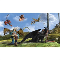 How to Train Your Dragon Pre-Pasted Mural
