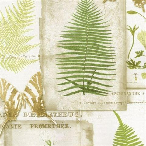Parchment Ferns Wallpaper