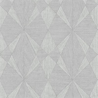 Intrinsic Silver Geometric Wood Wallpaper