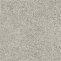 Joaquin Taupe Faux Cement Wallpaper