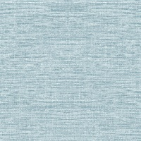Light Blue Sisal Hemp