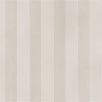 Matte Shiny Stripe  in Taupe