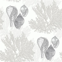 Nauset Cream Seashell Shores Wallpaper