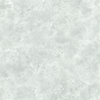 Aspasia Distressed Texture