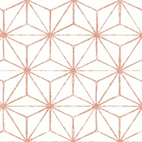 Orion Geometric
