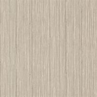 Petrucio Light Brown Textured Silk Panel