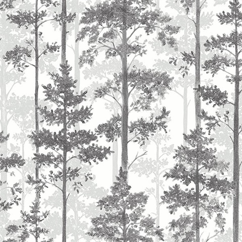 Pine Multicolor Silhouette Trees Wallpaper