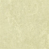 Mansour Light Green Plaster Texture Wallpaper