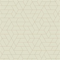 Ashford House Point of View Wallpaper - Beige
