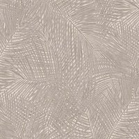 Raina Taupe Fronds Wallpaper