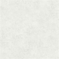 Rainey Dove Stucco Texture Wallpaper