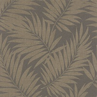 Regan Dark Brown Palm Fronds Wallpaper