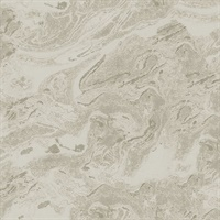 Reyne Taupe Marble  Wallpaper