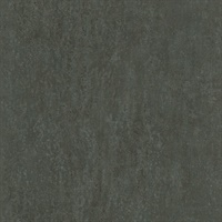 Segwick Black Speckled Texture Wallpaper