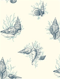 Shell Toile