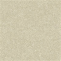 Duchamp Champagne Metallic Texture Wallpaper